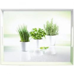 EMSA Plateau 40 x 31 cm - Herbes