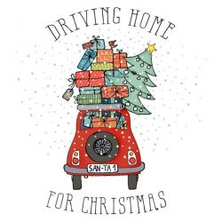 BRAUN COMPANY Lot de 20 serviettes 'Driving Home for Christmas'